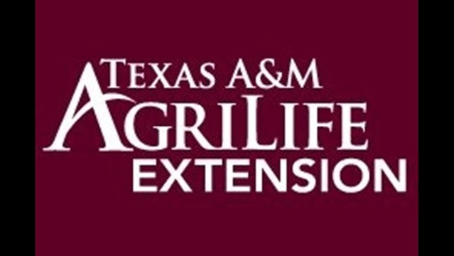 Texas A&M Agrilife Extension Service Hosting Upcoming Programs