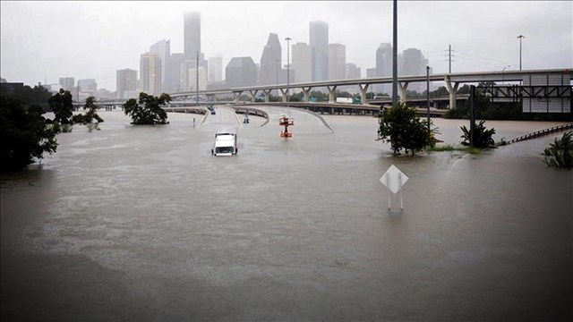 How You Can Help Harvey Survivors