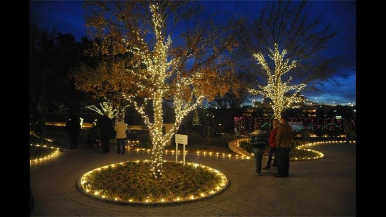 Amarillo botanical gardens christmas lights