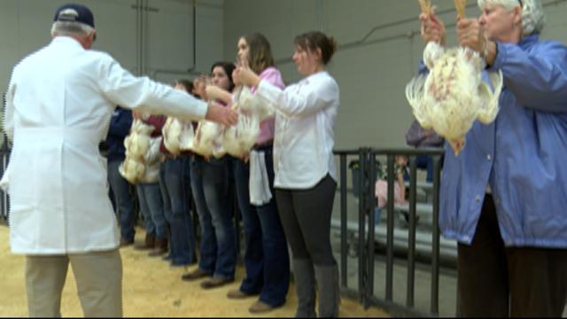 70th Annual Randall County Jr. Livestock Show
