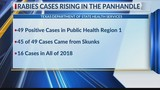 Positive rabies cases continue to rise in the panhandle